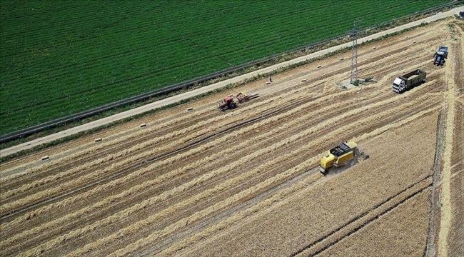 Bakan Pakdemirli: Tarımsal destek ödemeleri bugün başlıyor