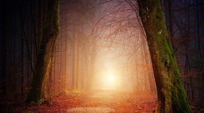 Rüyada şeytan görmek nedir? Rüyada şeytan görmek ne anlama gelir, nasıl yorumlanır?