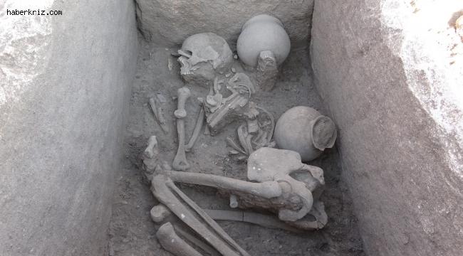 Çayönü Höyüğü'nden sandık tipi mezar çıktı
