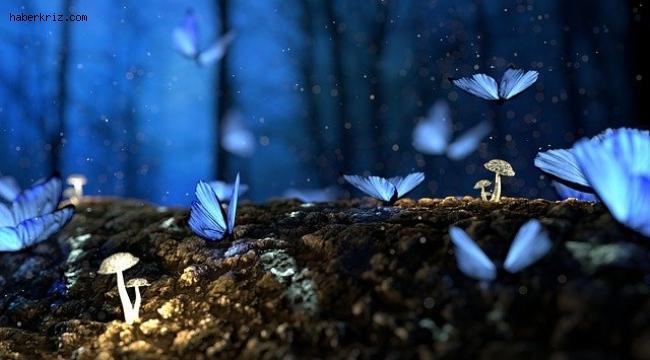 Rüyada esnemek nedir? Rüyada esnediğini görmek nedir? Rüyada esneme yorum ve tabiri nedir?