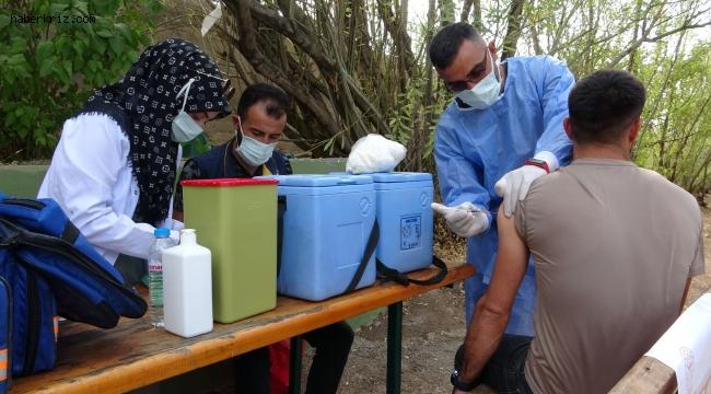 Van Gölü sahiline aşı standı kuruldu